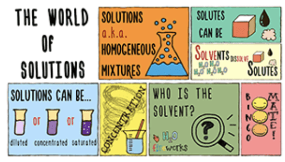 Year 7 - Solutions Presentation